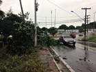 Forte chuva deixa trechos de Manaus sem luz; ocorrências chegam a 42