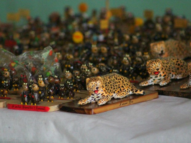 Todas as peças estão à venda (Foto: Eduardo Gomes/Inpa)