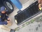 Droga é encontrada dentro de carro em caminhão-cegonha na Bahia
