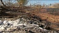 Incêndio destrói 300 hectares de reserva no interior de SP