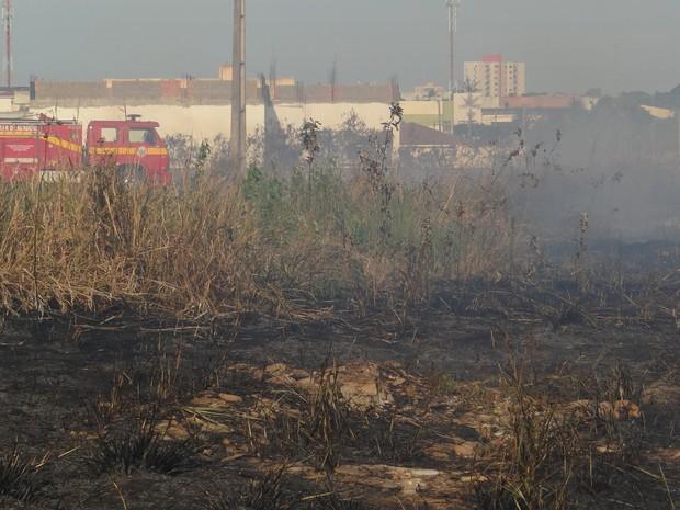 Foram utilizados 20 mil litros para conter o incêndio (Foto: Michelle Farias/G1)