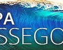 Raio-X: 7 títulos, recorde e semelhança com Brasil são trunfo no mar da França
