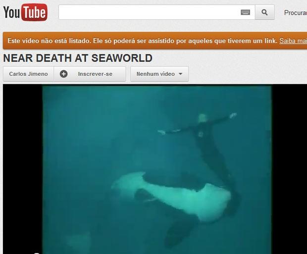 Vídeo flagra ataque de orca a treinador nos EUA (Foto: Reprodução de vídeo)