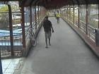 Vídeo feito horas após morte de jovem no RS mostra suspeito do crime