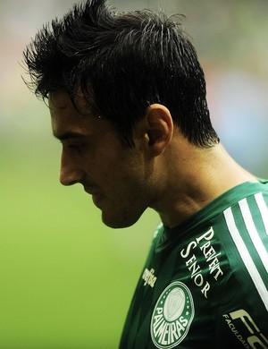 Robinho Palmeiras X Vasco (Foto: Marcos Ribolli)