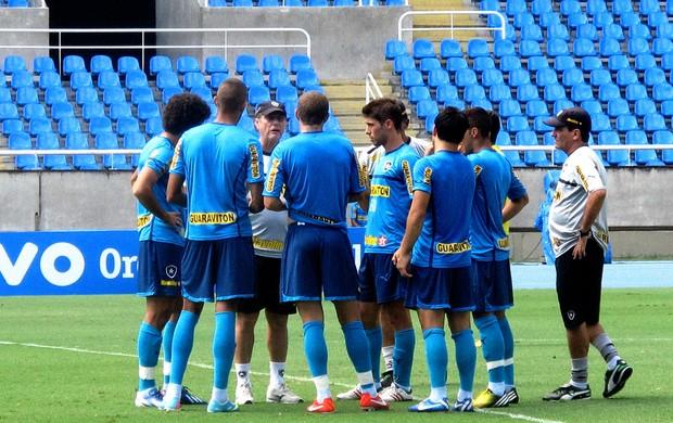 jogadores botafogo treino (Foto: Fábio Leme)