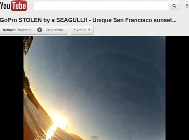 Imagens capturadas por câmera durante sobrevoo de gaivota foi postado no YouTube (Foto: Reprodução)