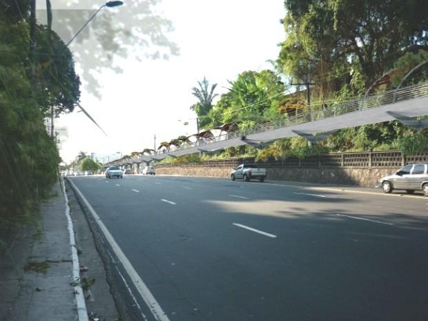 Segundo universitário, passarela suspensa terá 18 quilômetros de extensão (Foto: Divulgação)