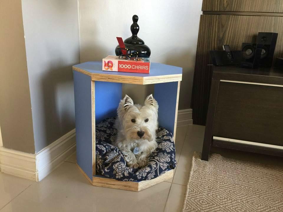 Módulos da marca são destinados a casas com pets.  (Foto: Divulgação)