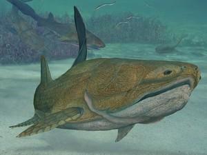 Ilustração sugere como seria o peixe 'Entelognathus primordialis' (Foto: Divulgação/Brian Choo)