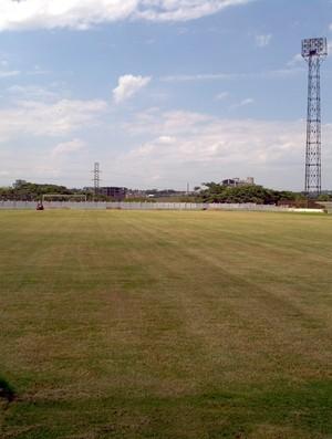 Gramado do estádio Palma Travassos, em Ribeirão Preto (Foto: João Fagiolo / Globoesporte.com)