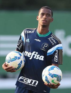 Matheus Sales Palmeiras (Foto: Cesar Greco / Ag. Palmeiras)