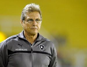 Oswaldo de Oliveira jogo Botafogo Sobradinho (Foto: Fabio Castro / Agif)