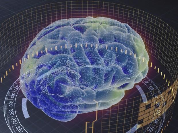 Estímulos deixam cérebro mais ativo e mantêm órgão saudável a vida toda (Grep) (Foto: Globo Repórter)