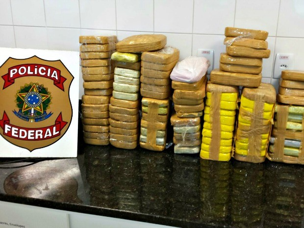 Droga foi apreendida pela Polícia Militar e federal  (Foto: Aline Nascimento/G1)