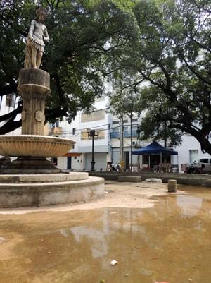 Fonte da Praça Dezessete está seca, assim como a vegetação (Foto: Marina Barbosa / G1)