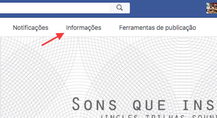 Link para acessar informações de uma página do Facebook (Foto: Reprodução/Marvin Costa)