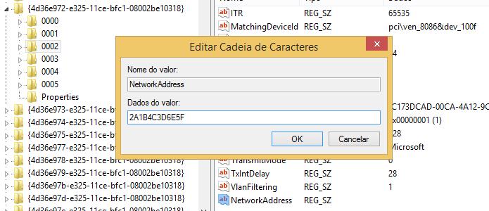 Digite o endereço MAC nos dados de valor do item criado (Foto: Reprodução/Helito Bijora)