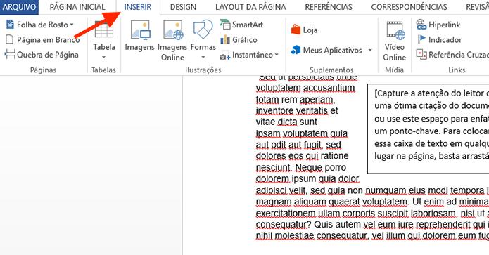 Acessando a aba inserir do Microsoft Word (Foto: Reprodução/Marvin Costa)