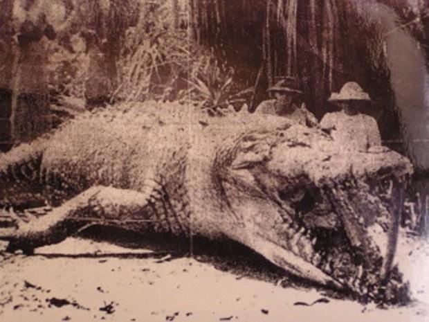 Polonesa Krystina Pawloski matou crocodilo de 8,6 metros em 1957 (Foto: Reprodução/Imgur/Craigydavi )