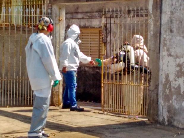 Ação de combate à dengue em Limeira (Foto: Secretaria de Saúde de Limeira/Divulgação)