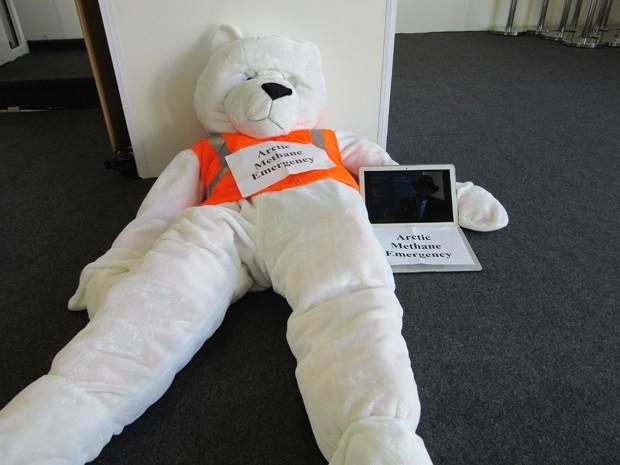 Urso polar desmaiado chamou a atenção dos participantes na COP 20 (Foto: Eduardo Carvalho/G1)