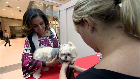 Franquia de cursos mira no mercado pet e ensina fazer roupa para animais