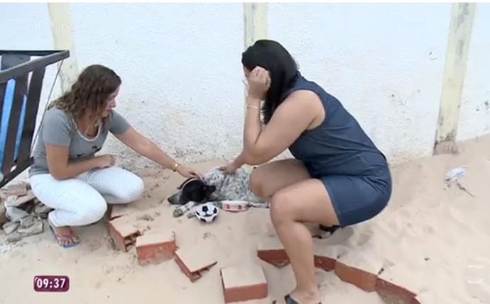 Vizinhos visitam diariamente o local e levam água e comida para o cachorro (Foto: Reprodução/TV Globo)