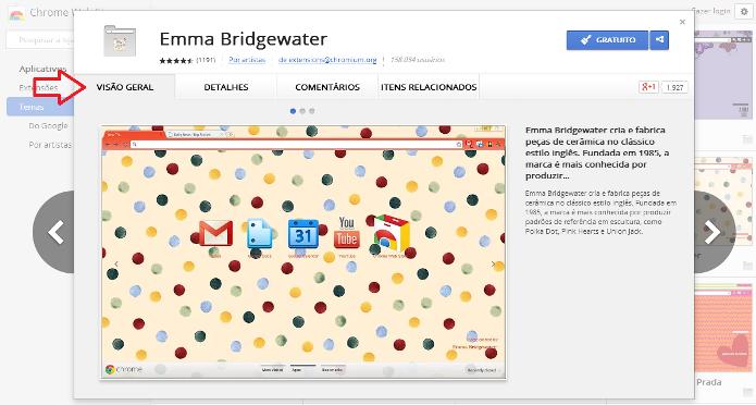 Detalhes e visão geral do tema para o Google Chrome (Foto: Reprodução/Lívia Dâmaso)