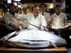 Primeiro atum do ano é leiloado no Japão por R$ 474 mil