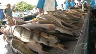 Semana Santa aumenta procura por pescado em Santarém
