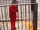 Premiê japonês condena assassinato 'revoltante' de piloto jordaniano