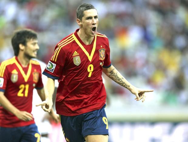Fernando Torres comemora gol da Espanha contra a Nigéria (Foto: Agência EFE)