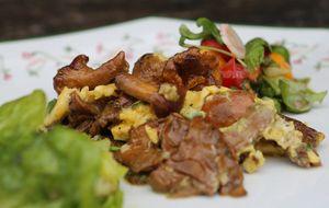 Como fazer omelete de cogumelo e ervas