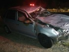 Duas pessoas ficam feridas após carro bater em vacas na BR-381