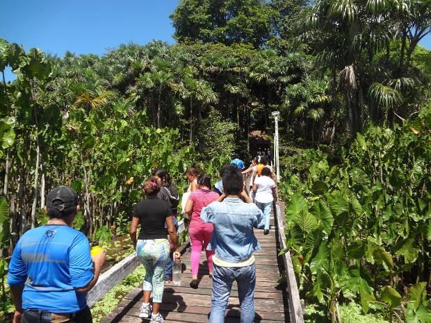 Parque é alternativa para passeios ecológicos perto de Belém (Foto: Izabella Bemerguy / G1)