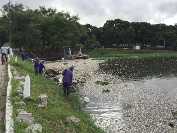 Funcionários da universidade realizavam trabalhos de limpeza da lagoa durante a manhã (Foto: Valéria Farias/Arquivo pessoal)