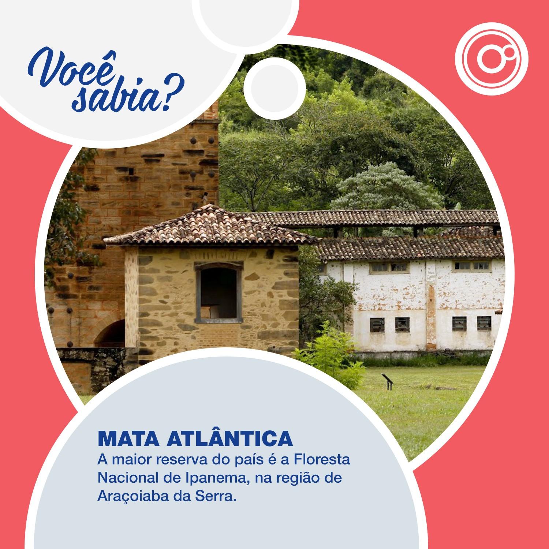 O 'Você Sabia?' destaca que o maior ecossistema de Mata Atlântica do país se encontra na Floresta Nacional de Ipanema, aqui na região  (Foto: Reprodução/TV TEM)