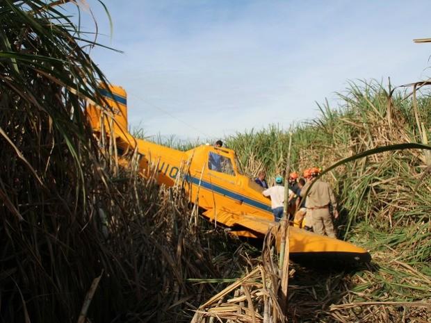 Avião agrícola fez pouso forçado em canavial de MS (Foto: Sandro Almeida/Jornal da Nova)