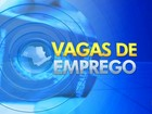 PATs oferecem 55 oportunidades de emprego na região de Itapetininga