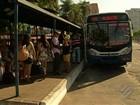 Passageiros enfrentam filas para embarcar em direção à Mosqueiro