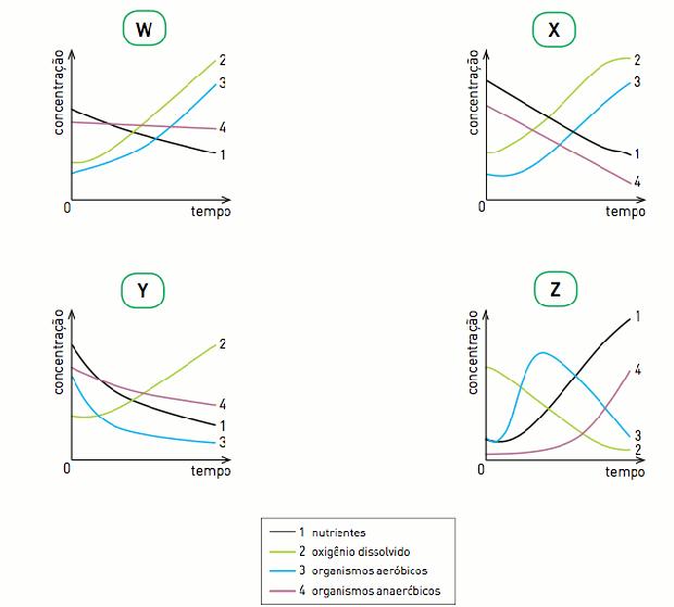 Gráficos (Foto: Reprodução/UERJ)