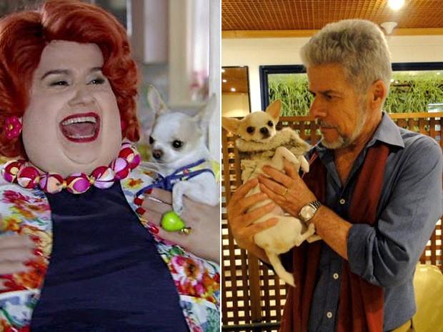 Redonda é apaixonada por Pingo, e José Mayer não esconde o encanto (Foto: Saramandaia/TV Globo)