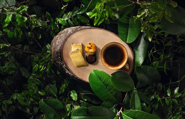 Bel Coelho, café (Foto: Sérgio Coimbra/ divulgação)