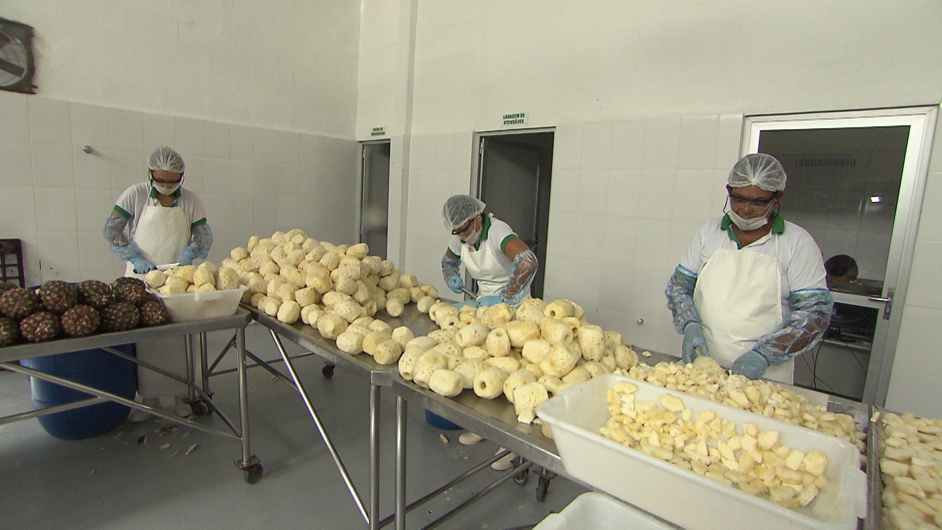 A fruta desidratada é utilizada na produção de doces, sorvetes e barras de cereal (Foto: Divulgação)