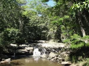 Cachoeira do Rio Brandão na Floresta da Cicuta (Foto: Arquivo/ICMBio-ARIE Floresta da Cicuta)