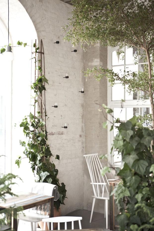 Floresta urbana: 10 maneiras contemporâneas de usar plantas na decoração (Foto:  Jonas Bjerre-Poulsen)