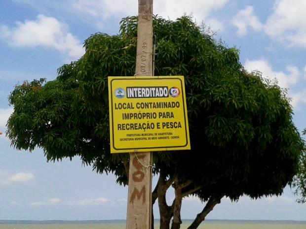 Segundo a Defesa Civil, a praia de Beja, em Abaetetuba, foi a mais afetada pela contaminação provocada pelo óleo e carcaças de bois mortos em naufrágio no porto de Vila do Conde, em Barcarena. (Foto: Divulgação/ascom Setur)