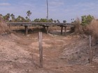 Agricultores de Boa Vista reclamam de perdas na produção devido à seca