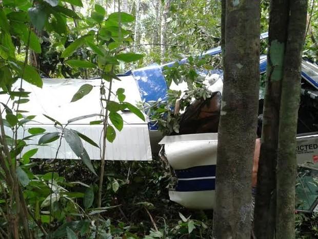 O piloto foi localizado com ferimentos leves, minutos depois da queda do avião em Araguaína (Foto: Fabíola Séles/TV Anhanguera)